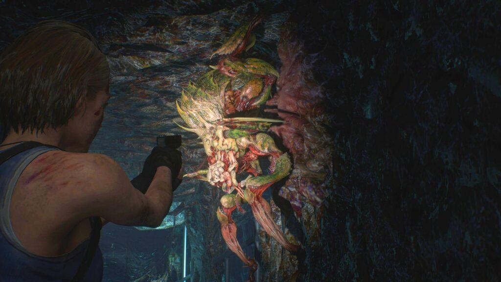 Resident Evil 3 - Spinnen